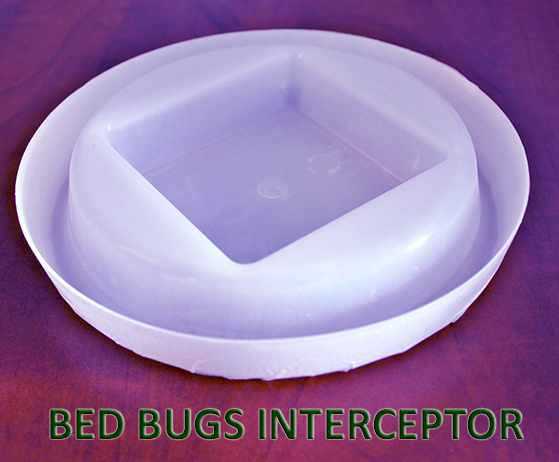 All about Bed Bugs Detection Amiral ServiceAmiral Service : Bed Bug Defender from amiralservice.com size 559 x 462 jpeg 237kB